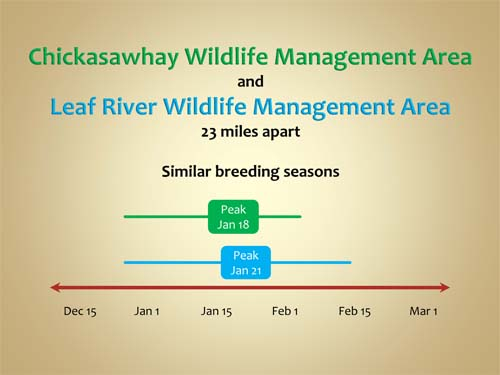 Chickasawhay Wildlife Management Area