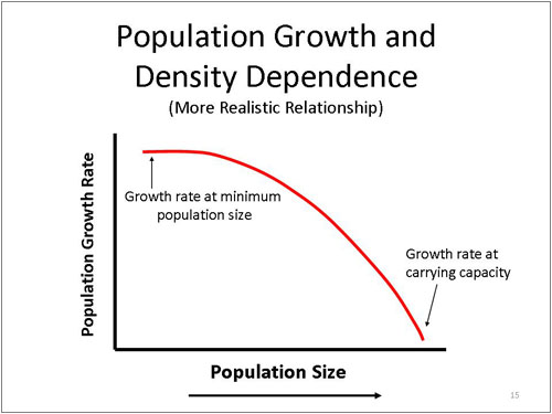 Figure 15. Population Growth and Density Dependence - More Realistic Relationship