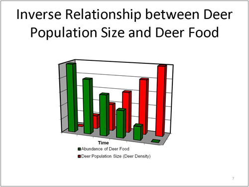 Inverse Relationship between Deer Population Size and Deer Food