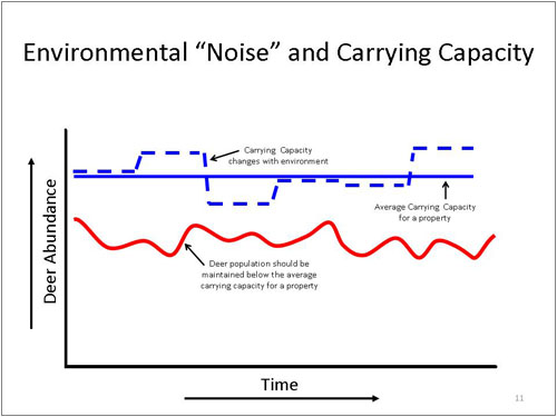 "Environmental ""Noise"" and Carrying Capacity"